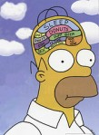 Homer Simpson's Brain from Anna