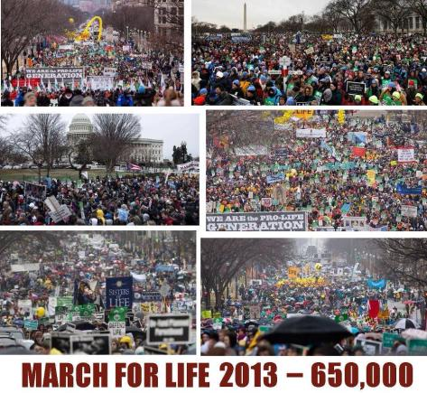 The largest civil protest in the world, held annually, thanks to R v. Wade