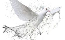 I saw the Spirit come down like a dove from heaven and remain upon him -- Jn 1:32